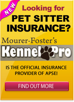 Mourer Foster Banner