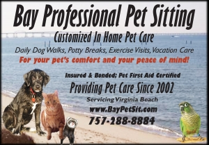 Bay Professional Pet Sitting