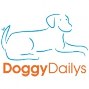 Reliable Dog Walking & Trustworthy Pet Care Services