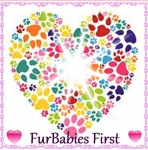 FurBabies First Pet Sitters