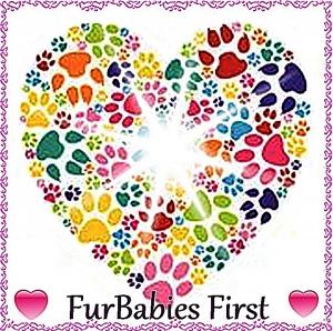 FurBabies First