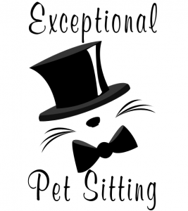 Hire a Professional Pet Sitter!