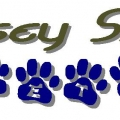 Jersey Shore Pets - Serving All of Ocean County