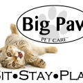 Big Paw Pet Care