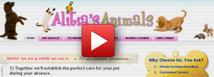 pet sitter website school